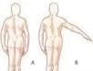 movimientos hombro